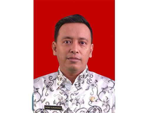 Endro Sumarsono, M.Pd